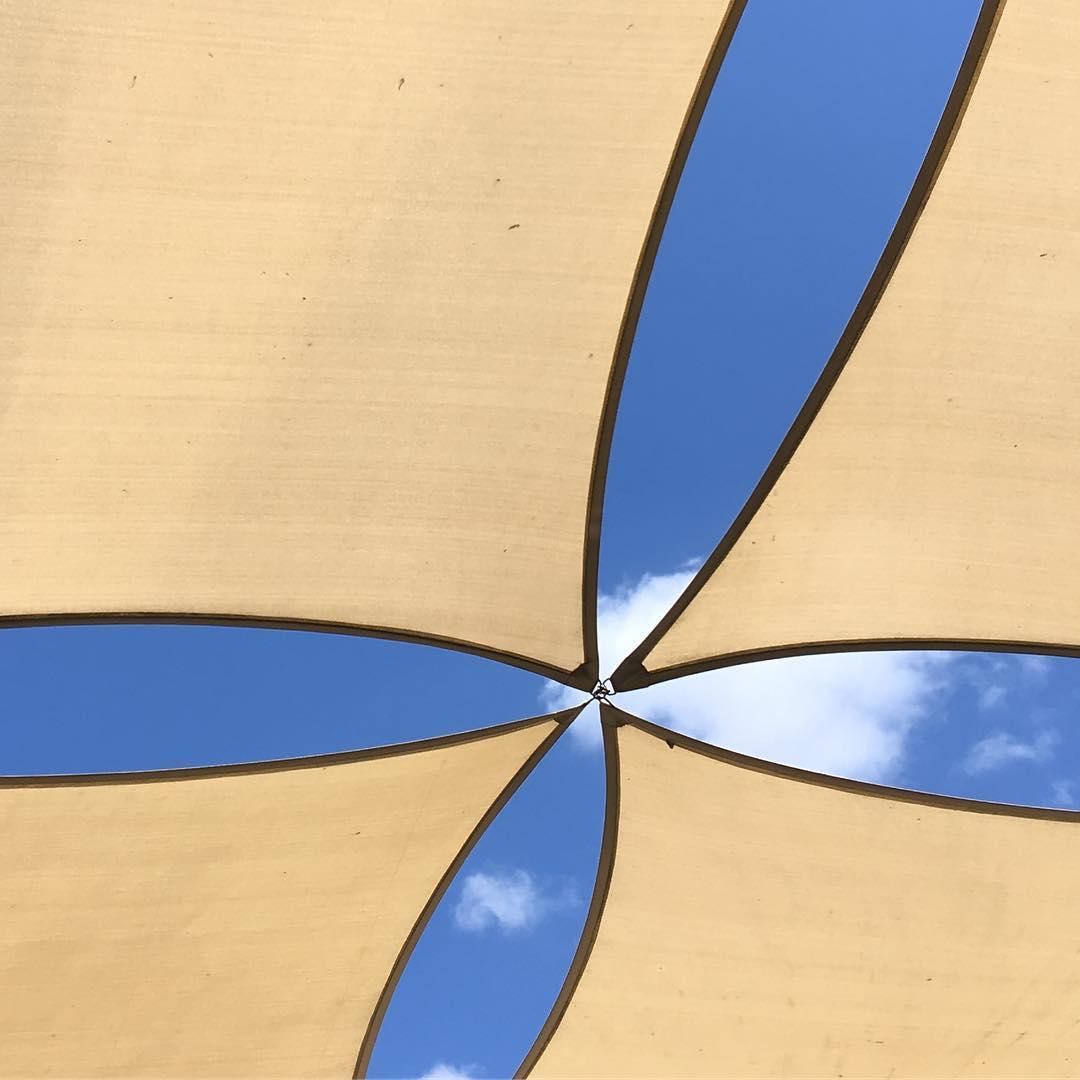 gibsonstuff gibsonstudio sunlight interiordesign interiordesigner homefurnishings vintage homedecor clic inspo decorinspiration elledecor